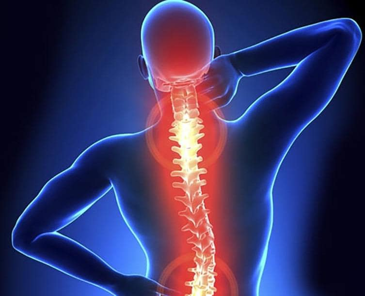 chiropractic-my spine