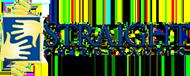 straightchrio-logo